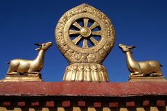 Wheel of dharma Royalty Free Stock Photography