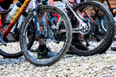 Wheel dirt bicycle after the race Stock Images