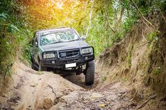 4 wheel drive in the forest. 4 wheel drive is climbing on a difficult off-road in mountain forests in Thailand Royalty Free Stock Photos