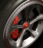 Wheel (Exclusive Design) Royalty Free Stock Photos