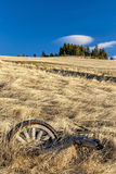 Wheel in a field below a tree covered hill Stock Photos