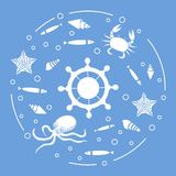 Wheel, fish, seashells, starfish, crab, octopus. Steering wheel and sea inhabitants: fish, seashells, starfish, crab, octopus. Design for banner, poster or Stock Photos