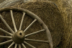 Wheel in hay Stock Photos