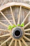 Wheel of Life Stock Photography