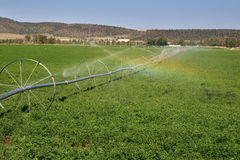 Wheel line irrigation system Royalty Free Stock Photo