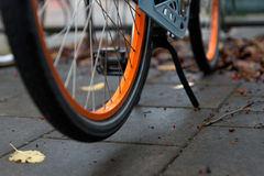 Wheel of orange bike in autumn Royalty Free Stock Photo