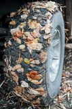 The wheel of a powerful car with sticky autumn leaves. The concept of an autumn walk.  Stock Images