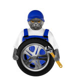 Wheel repair. Cute cat isolated on white Royalty Free Stock Image