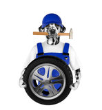 Wheel repair. Dalmatian dog isolated on white Stock Image