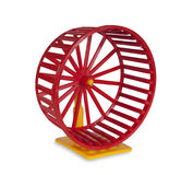Wheel for rodents Royalty Free Stock Photography