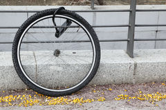 Wheel of stolen bicycle. Fasten by lock to metal fence Stock Photos