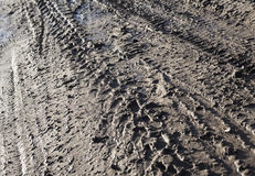Wheel tracks on the dirt road Stock Images