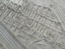 Wheel tracks and footprints of human and the dog on the sand royalty free stock images