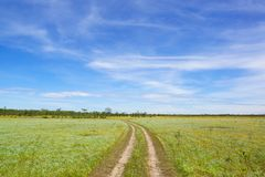 Wheel tracks with green meadow. And blue sky Stock Images