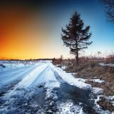 Wheel tracks in mire at winter royalty free stock image