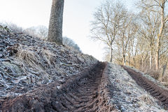 Wheel tracks on muddy ground Royalty Free Stock Photo