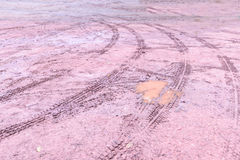 Wheel tracks in outdoor carpark after raining Royalty Free Stock Photos