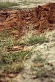 Wheel tracks on the soil. Stock Photo