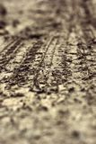 Wheel tracks on the soil. Royalty Free Stock Image