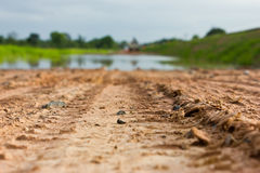 Wheel tracks to water. Stock Photography