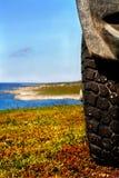 Wheel and tundra coast Stock Photo