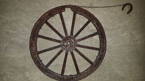 Wheel on wall. Wheel wall gray horse nature beuty great big horse animal vehicle lucky Royalty Free Stock Photography