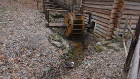 Wheel of the water mill rotates on the water stream. Goose is walking on the shore of the river near the water mill. stock video footage