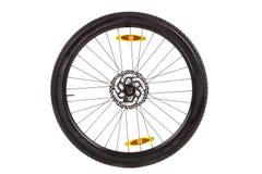 Wheel whish front disc brake  for mountain bike. Stock Photo