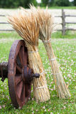 Wheel of wooden cart and sheaves of wheat ears. Royalty Free Stock Photo