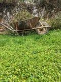 wheelbarrow Obrazy Stock