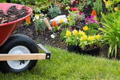 Wheelbarrow alongside a newly planted flowerbed Royalty Free Stock Images