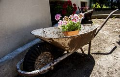 Wheelbarrow differentely used stock images