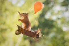 Wheelbarrow balloon Stock Images
