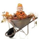 Wheelbarrow completamente do bebê fotografia de stock