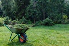 Wheelbarrow with cut grass in the garden. a park. cart one wheel. stock photos
