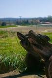Wheelbarrow de madeira velho Fotografia de Stock Royalty Free
