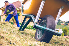 Wheelbarrow in the field and man raking on Stock Photography