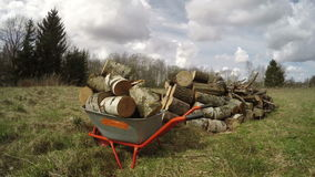 Wheelbarrow with firewood on spring field, time lapse 4K stock footage