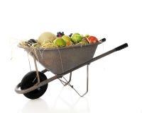 Wheelbarrow of Fruit royalty free stock photos