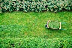 Wheelbarrow full of grass Stock Image