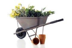Wheelbarrow Full of Spring royalty free stock photos
