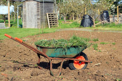 Wheelbarrow full of weeds. Stock Images