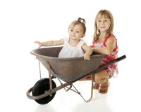 Wheelbarrow Fun Stock Images