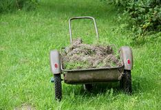 Wheelbarrow in the Garden Royalty Free Stock Photos