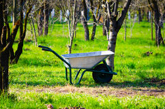 Wheelbarrow in a garden Stock Photo