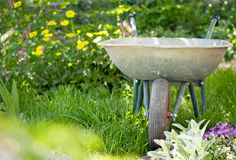 Wheelbarrow in the garden Stock Photography