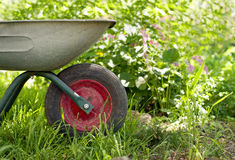 Wheelbarrow in the garden Royalty Free Stock Image