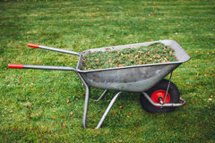 Wheelbarrow with grass on green lawn background. Closeup view Royalty Free Stock Image