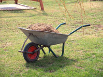 Wheelbarrow. With grass on the young spring grass Royalty Free Stock Photo