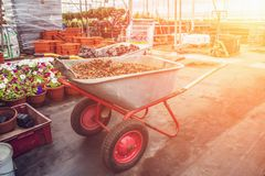 Wheelbarrow with gravel inside modern greenhouse, industrial gardening tools equipment for horticulture at sunlight. Effect royalty free stock images